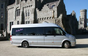 The 16 Seater Party Limo Bus 3