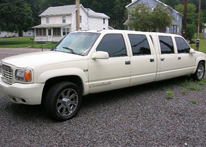 Check out these World's Weirdest Limos - Absolute Limos
